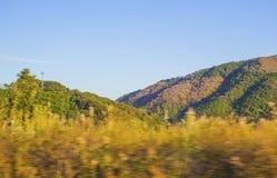 Paisaje del verano en montañas con el cielo azul Imágenes de archivo libres de regalías