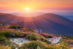 Paisaje del verano en montañas con el sol. Imagen de archivo
