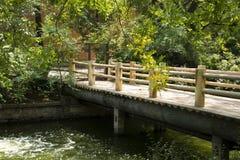 Paisaje del verano, puente de madera y hojas del verde Foto de archivo