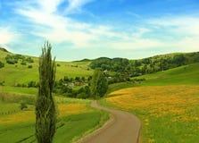 Paisaje del verano, un pequeño pueblo en las montañas, prados con las flores amarillas Fotos de archivo libres de regalías