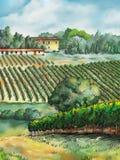 Paisaje del viñedo libre illustration