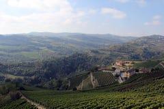 Paisaje del viñedo Fotografía de archivo