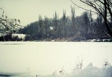 Paisaje desanimado del invierno, con las duchas de nieve en el pon congelado fotos de archivo