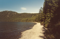 Paisaje embotado en la orilla del lago Fotos de archivo libres de regalías