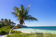 Paisaje en Bahia Honda Beach Imagen de archivo libre de regalías