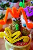 Paisaje en conserva del cactus Foto de archivo libre de regalías