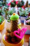 Paisaje en conserva del cactus Foto de archivo