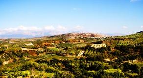 Paisaje en Creta con Olive Trees In Greece Imagenes de archivo