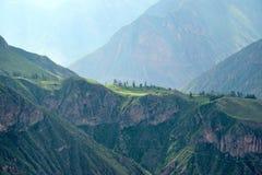 Paisaje en el barranco de Colca, Perú foto de archivo