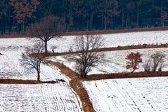 Paisaje en el invierno Fotografía de archivo