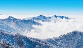 Paisaje en el invierno, Deogyusan foto de archivo libre de regalías