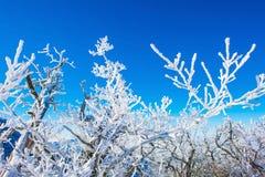 Paisaje en el invierno, Deogyusan en Corea imagenes de archivo