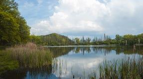 Paisaje en el lago Fotografía de archivo