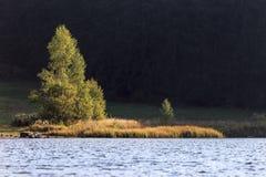 Paisaje en el lago en luces de la mañana foto de archivo libre de regalías