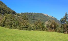 Paisaje en el Mt. Rigi Foto de archivo libre de regalías