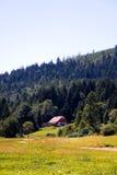 Paisaje en el Negro-bosque, Alemania imagen de archivo libre de regalías
