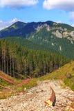 Paisaje de las montañas de Tatra Imágenes de archivo libres de regalías