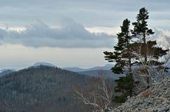 Paisaje en el taiga 1 de la montaña Foto de archivo
