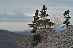 Paisaje en el taiga 2 de la montaña Imagenes de archivo