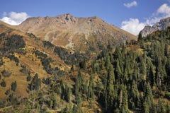 Paisaje en el valle de Medeu kazakhstan fotos de archivo