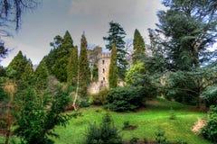 Paisaje en Irlanda Foto de archivo