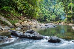Paisaje en Khao Sok National Park en Tailandia Khao Sok National Park el bosque de la selva de la lluvia en la provincia de Surat Foto de archivo