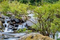 Paisaje en Khao Sok National Park en Tailandia Khao Sok National Park el bosque de la selva de la lluvia en la provincia de Surat Fotografía de archivo