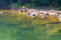 Paisaje en Khao Sok National Park en Tailandia Khao Sok National Park el bosque de la selva de la lluvia en la provincia de Surat Imagen de archivo libre de regalías