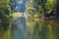 Paisaje en Khao Sok National Park en Tailandia Khao Sok National Park el bosque de la selva de la lluvia en la provincia de Surat Foto de archivo libre de regalías
