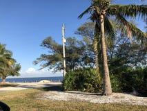 Paisaje en la Florida foto de archivo