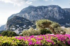 Paisaje en la isla de Capri Imagen de archivo libre de regalías