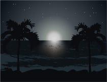 Paisaje en la noche ilustración del vector