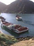 Paisaje en la orilla del mar del Caribe con los barcos y los pájaros de pesca en la isla Margarita en Venezuela imágenes de archivo libres de regalías