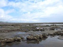Paisaje en la playa Costa Rica Fotos de archivo libres de regalías