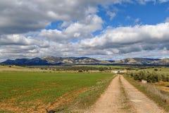 Paisaje en la provincia de Albacete, España Foto de archivo libre de regalías