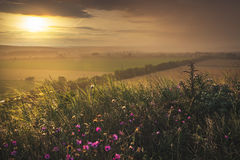 Paisaje en la puesta del sol Fotos de archivo