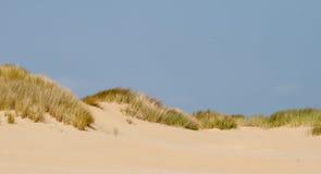 Paisaje en las dunas con la hierba Fotografía de archivo