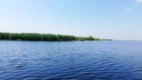 Paisaje en las im?genes de v?deo del delta de Danubio, Rumania almacen de video