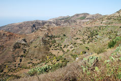 Paisaje en las islas Canarias Imagen de archivo