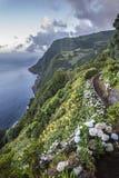 Paisaje en las islas de Azores, Portugal fotos de archivo