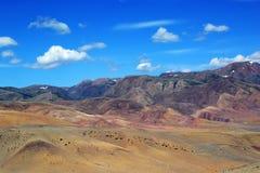 Paisaje en las montañas de Altai Imagen de archivo libre de regalías