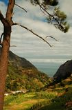 Paisaje en las montañas de Madeira 2 Imagenes de archivo