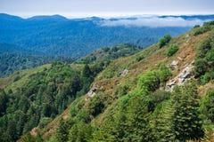 Paisaje en las montañas de Santa Cruz con la niebla que se retrasa sobre los valles, área de la Bahía de San Francisco, Californi fotos de archivo libres de regalías