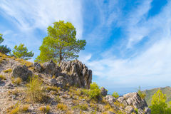 Paisaje en las montañas, España del verano Imagen de archivo