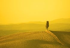 Paisaje en luz amarilla de la puesta del sol Fotografía de archivo libre de regalías