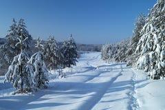 Paisaje en madera del invierno Fotografía de archivo