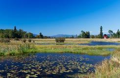 Paisaje en Montana imagenes de archivo
