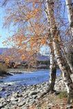 Paisaje en otoño imagen de archivo