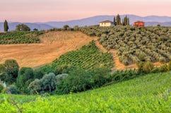 Paisaje en sol de la tarde de Toscana Fotografía de archivo libre de regalías