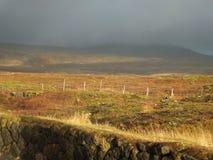 Paisaje en Thingvellir, Islandia, alrededor de la grieta continental, iluminada por el sol en el fondo de nubes gris oscuro fotos de archivo libres de regalías